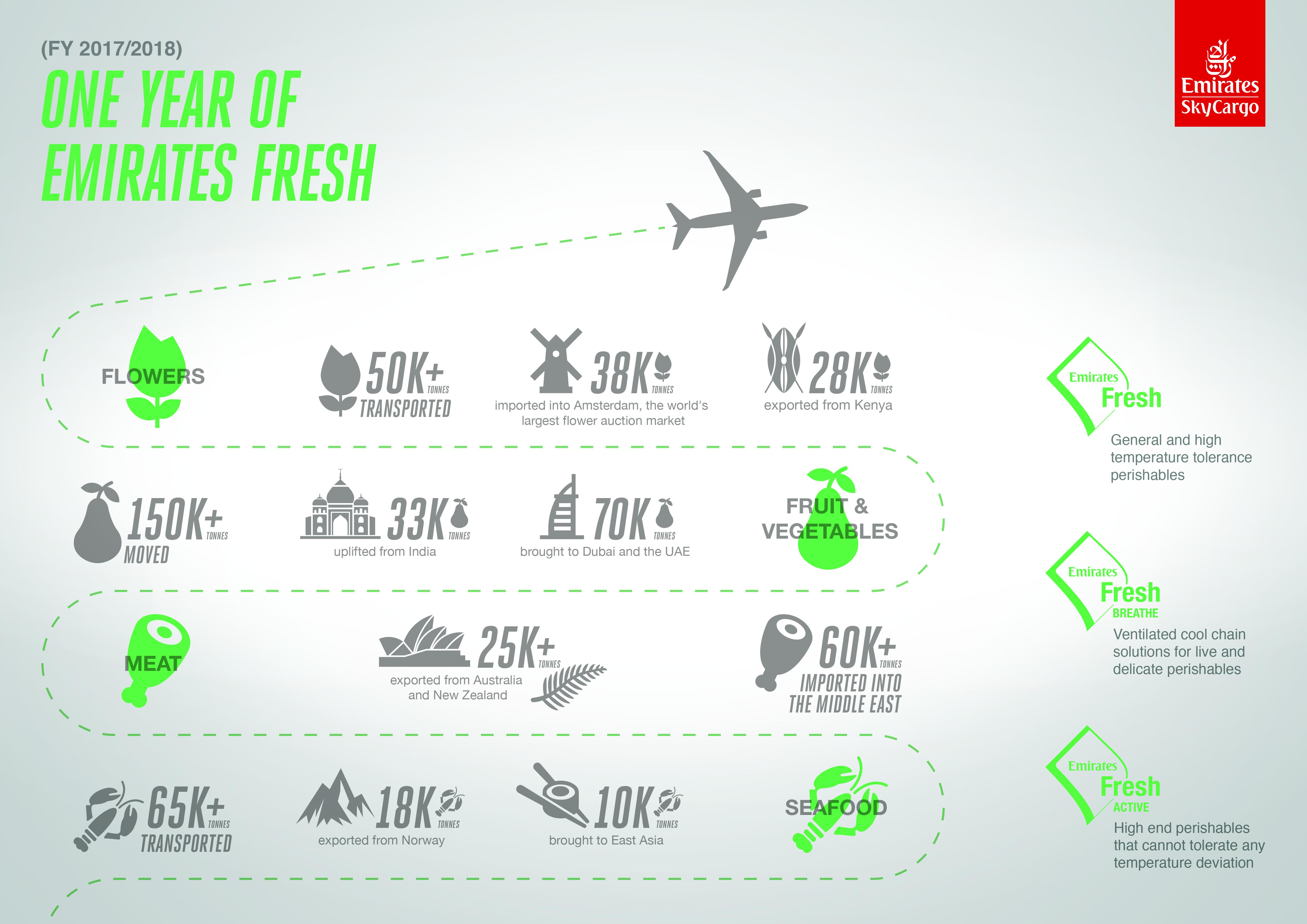 airport code lookup download
